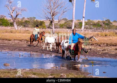 River Crossing - Stockfoto