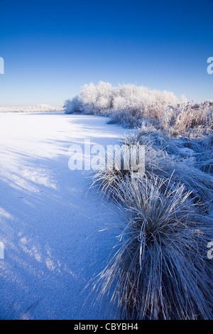 Schatten über einen gefrorenen Schnee bedeckten Teich auf einem sonnigen Winternachmittag an den Gewässern Rand - Stockfoto