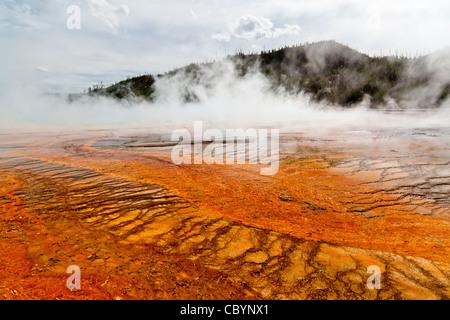 Die Grand Prismatic Spring im Yellowstone National Park ist die größte heiße Quelle in den Vereinigten Staaten, - Stockfoto