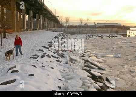 Ihr Hund im Schnee auf dem gefrorenen Hudson River in Riverside Park spazieren gehen - Stockfoto
