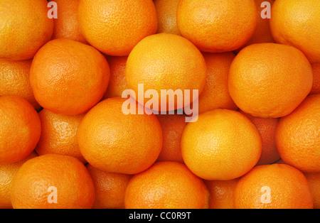 Clementinen - eine Vielzahl von Mandarine - Stockfoto