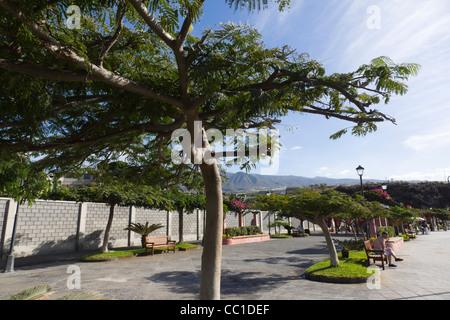 Die kleinen Fischerdorf und neues Resort San Juan an der West Küste von Teneriffa. - Stockfoto