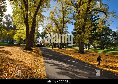 Herbstlaub und Brunnen in Fitzroy Gardens Melbourne Australien CBD-Bereich. einer der vielen Winter-Sehenswürdigkeiten - Stockfoto