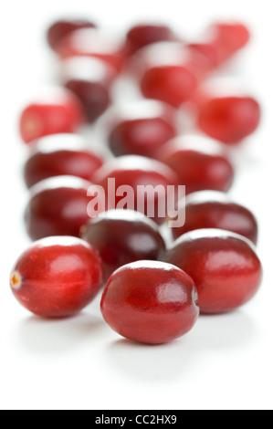 cranberry isoliert auf wei em hintergrund stockfoto bild 92083645 alamy. Black Bedroom Furniture Sets. Home Design Ideas