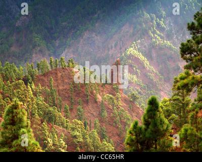 Wald zu Pisten in die vulkanische Krater auf La Palma, Kanarische Inseln, Spanien festhalten - Stockfoto