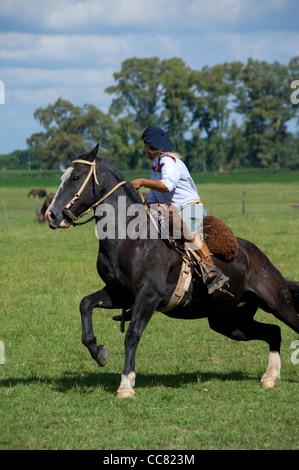 Argentinien, Buenos Aires, San Antonio de Areco. Estancia El ombu de Areco. Seltene weibliche Gaucho. Modell & Eigentum - Stockfoto