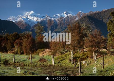 Blick auf Mt. Cook (Aoraki) und Mt Tasman von in der Nähe von Lake Matheson in Neuseeland gesehen Stockfoto