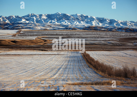 Erster Schnee auf den Feldern und Bergen - Stockfoto