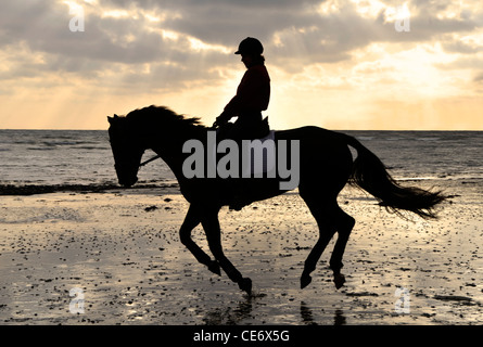 Silhouette des weiblichen Reiter Trab auf den Sandstrand bei Sonnenuntergang - Stockfoto
