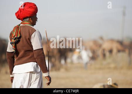 Kamel herder mit ihren Kamelen in Pushkar, Rajasthan. - Stockfoto