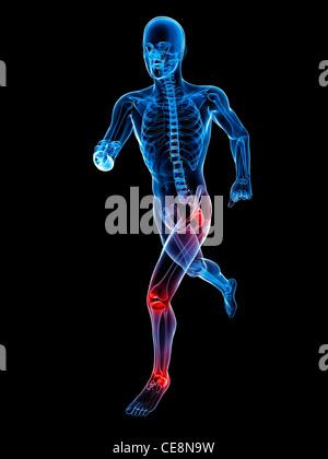 Knöchel Knochen Anatomie - Schmerz-Konzept Stockfoto, Bild: 80197144 ...