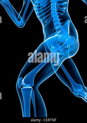 Skelett ausgeführt. Computer Kunstwerk eine Nahaufnahme des führenden Beines. - Stockfoto