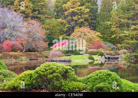 Herbstfarben in Asticou Azalea Garten auf Mount Desert Island, Maine. - Stockfoto