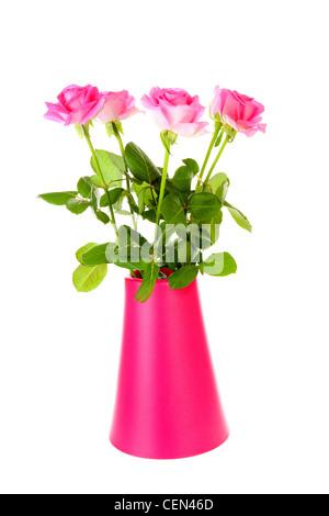 Strauß Rosen in rosa Vase vor weißem Hintergrund Stockfoto