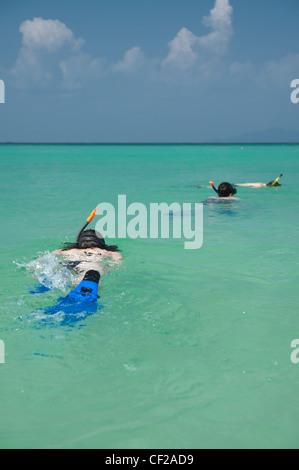 Schnorcheln im tropischen Ozean; Phi Phi Island Thailand - Stockfoto