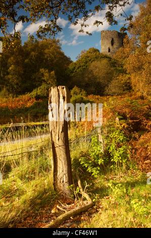 Herbst auf Burg Dolbadarn in Snowdonia. - Stockfoto