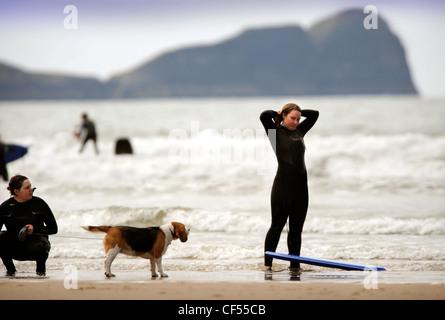 Surfer mit ihrem Hund in Rhossili Bay auf der Gower, South Wales UK - Stockfoto