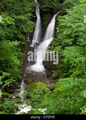 Stock Ghyll Kraft, einem malerischen Wasserfall im Lake District. - Stockfoto