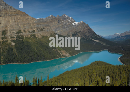 Gletscher-genährt Peyto Lake, Banff Nationalpark, Alberta, Kanada - Stockfoto