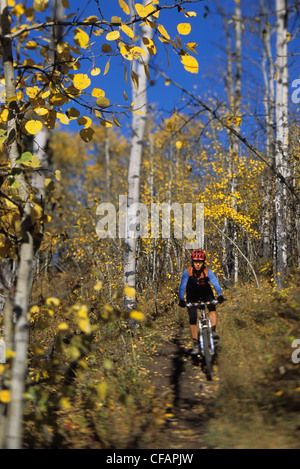 Eine weibliche Mountainbiker genießen die Wanderwege auf Sibbald Flats in Kananaskis Country, Alberta, Kanada - Stockfoto