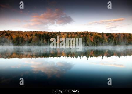Gelb, Orange und roten Herbstlaub und Nebel im Brewer See in Algonquin Provincial Park, Ontario, Kanada widerspiegelt - Stockfoto