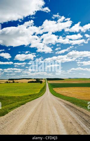 Schotterstraße durch Ackerland, Tiger Hügel, Manitoba, Kanada - Stockfoto