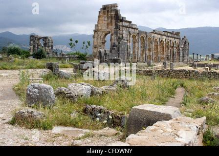 Die antike römische Stätte von Volubilis, UNESCO-Weltkulturerbe in der Nähe von Meknès, Marokko, Nordafrika, Afrika - Stockfoto