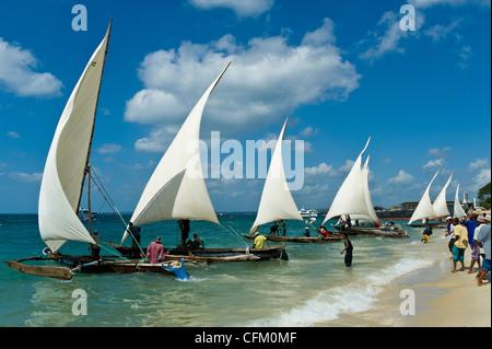 """Start einer Regatta für """"Ngalawa"""" der traditionellen Doppel-Outrigger Boote in Stone Town Sansibar Tansania - Stockfoto"""