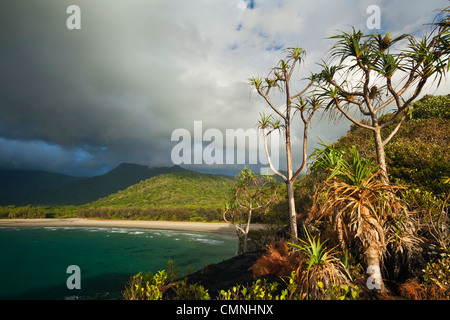 Ansicht der Myall Beach während Morgen Regen Sturm. Cape Tribulation, Daintree Nationalpark, Queensland, Australien - Stockfoto