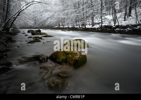 Gebirgsfluss durch den winterlichen Wald schweben. - Stockfoto