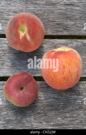 Frische Pfirsiche, Stillleben - Stockfoto