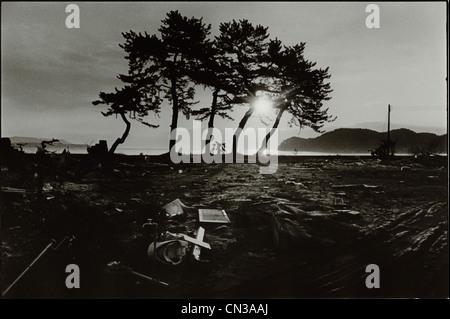 Sonnenlicht durch Silhouette Bäume und Geröll in Folge des 2011 Tohoku Erdbeben und Tsunami - Stockfoto