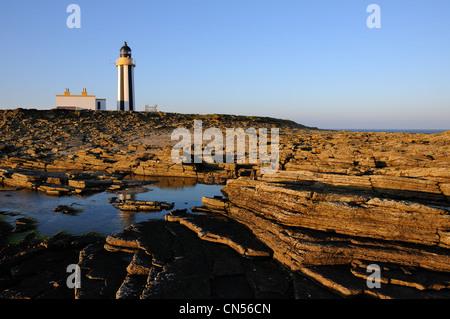 Start Point Leuchtturm bei Sonnenuntergang, Sanday, Orkney - Stockfoto