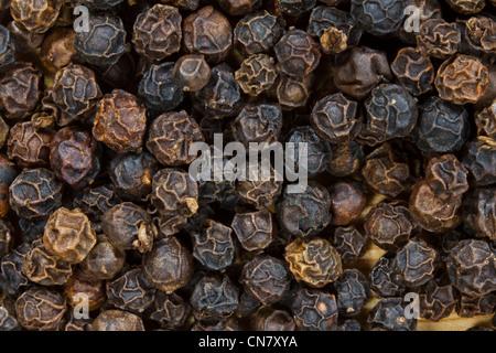 Nahaufnahme von schwarze Pfefferkörner - Stockfoto