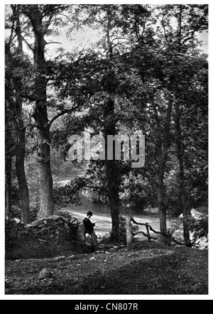 1900 Woodland Dell Marple Fluß Goyt - Stockfoto