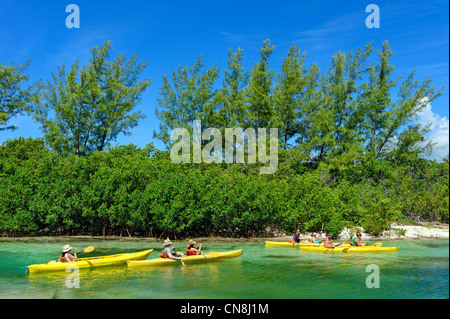 Bahamas, Grand Bahama Island, alte Freetown, Lucayan Nationalpark, Kanu-Kajak-Thread in den Mangroven Gewässern - Stockfoto