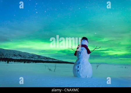 Digital verändert, Schneemann beobachten, Nordlicht, Winter, Eureka Summit, Glenn Highway, Yunan Alaska - Stockfoto
