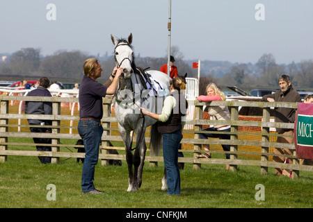 Ein reinrassiges Pferd mit einem Tierarzt seine Tong Riegel zu prüfen, bevor das Rennen - Stockfoto