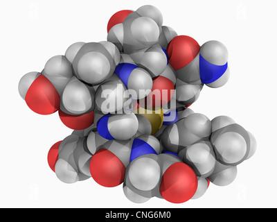 Alpha-Amanitin Toxin Molekül - Stockfoto