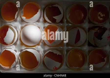 Ein ganzes Ei unter vielen gebrochenen Eiern