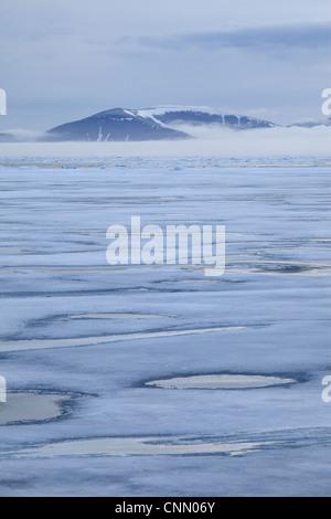 Blick auf Küste Eisschollen mit Nebel bedeckt die Berge im Hintergrund, Spitzbergen, Svalbard, september - Stockfoto