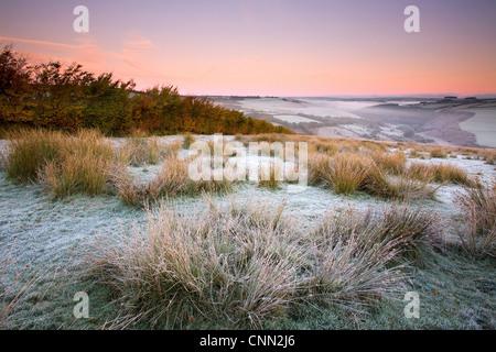 Blick Frost bedeckt Moorland Lebensraum Sonnenaufgang aufsteigenden Nebel Tal mit Blick auf Fluss Barl Landacre - Stockfoto