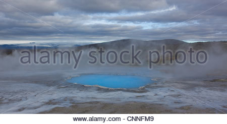 Dampf steigt über Hot springs - Stockfoto