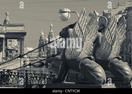Russland, Sankt Petersburg, Center, Bankovsky Brücke, Greifenstatue - Stockfoto