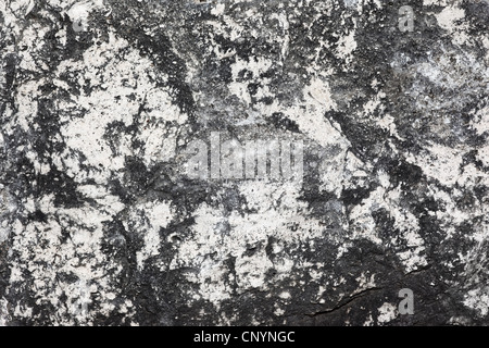 rusty white wall nahtlose muster stockfoto bild 76514036 alamy. Black Bedroom Furniture Sets. Home Design Ideas