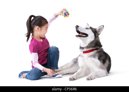 Niedliche kleine Mädchen spielen mit einem Husky Hund - Stockfoto