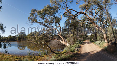 Quellwasser gespeisten Wasserstelle in der Nähe von Willandra Homestead, Willandra Nationalpark, New South Wales, - Stockfoto