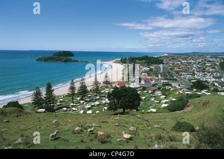 Neuseeland - Nordinsel - Bay of Plenty - Tauranga - The Main Strand (Omanui), Blick vom Mount Maunganui. - Stockfoto