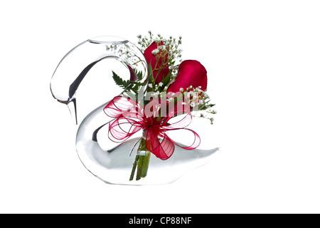 Schwan Glas mit roten Rosen, kleine weiße Blumen auf weißem ...