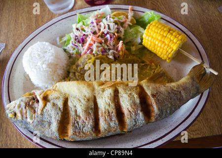 Typische Fisch-Mahlzeit, Costa Rica Mittelamerika - Stockfoto